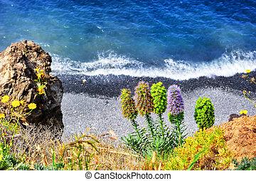 Summer landscape with beach. Madeira island