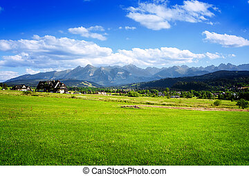 Summer landscape with beautiful mountains