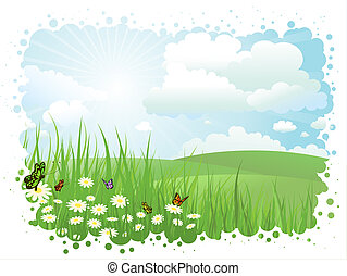 Summer landscape with butterflies and daisies in grass