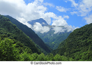 Summer landscape with Caucasus green mountains - Summer ...