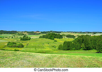 summer landscape with cloudless sky