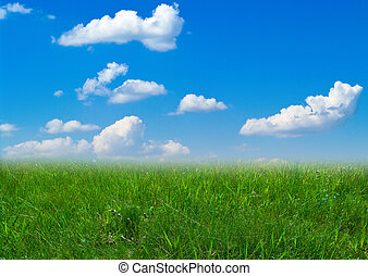 Summer landscape with cloudy sky