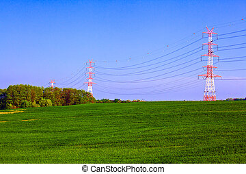 Summer landscape with electric poles