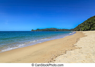 Summer landscape with golden sandy beach, blue ocean and clear cloudless sky in Abel Tasman National Park, New Zealand