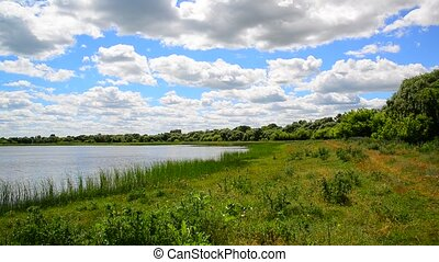Summer landscape with lake in central Russia