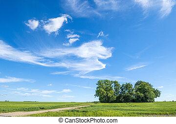 Summer landscape with magical cloud figures