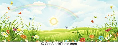 Summer landscape with rainbow