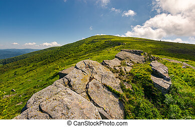summer landscape with stones on the hill - mountain...
