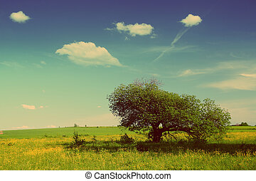 summer landscape with tree - vintage retro style