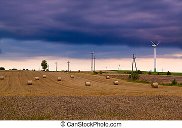 Summer landscape with wind turbines