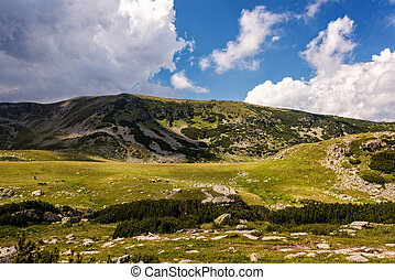 Summer landscapes in the high mountains of Romania