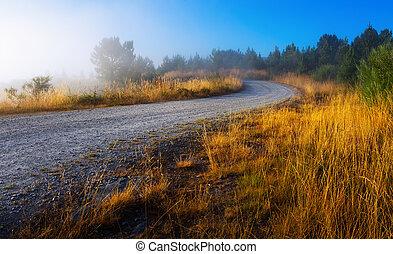 road in misty morning
