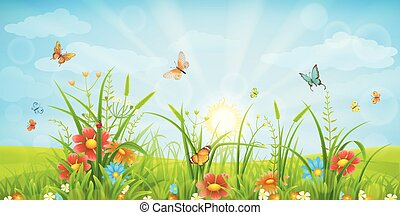 Summer meadow background - Green meadow background with...