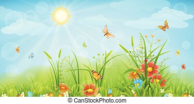Summer meadow background with green grass, flowers and ...