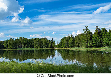 Summer minimalistic panoramic landscape with a lake in the park