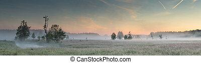 Summer misty morning