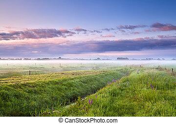 summer misty morning over meadows - summer misty morning...