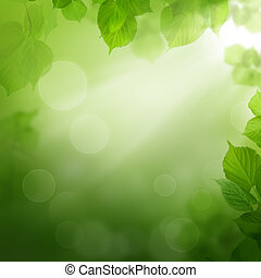 Summer morning - abstract background with leaves