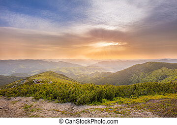Summer morning landscape in the mountains