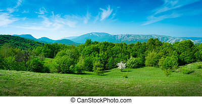Summer mountain landscape in Crimea