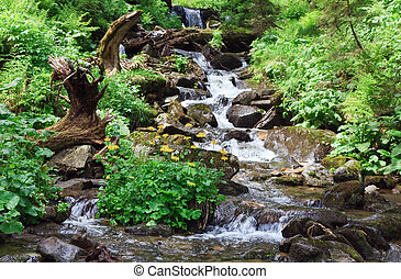 Summer mountain river - mountain river in summer forest with...