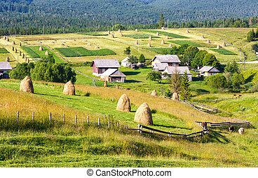 Summer mountain village outskirts with haystacks on field (Carpathian, Ukraine)