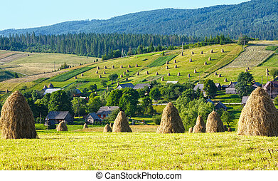 Summer mountain village outskirts with haystacks on field (Carpathian, Ukraine)