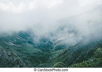 Summer mountain valley in overcast.