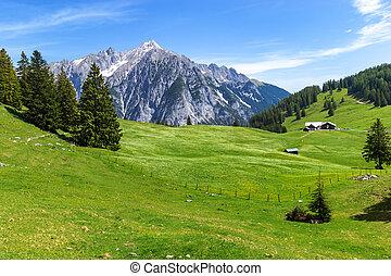 Summer mountains landscape in Alps. Austria, Gnadenwald, Tyrol Region