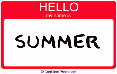 Summer Name Tag - Hello My Name is Summer name tag sticker...