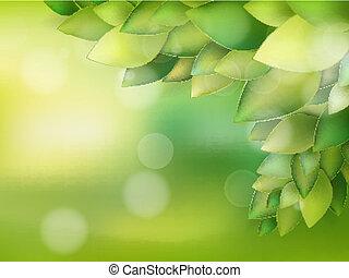 Summer natural backgrounds for your design. EPS 10
