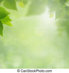 Summer natural backgrounds for your design