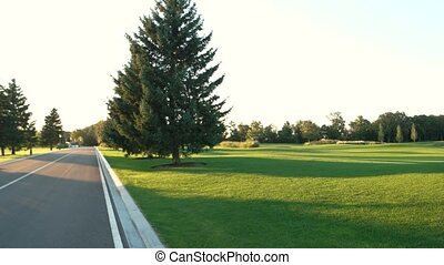 Summer nature and asphalt road. Trees on green lawn. New...