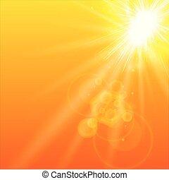 Summer orange background with sunlight.