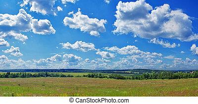 Summer panorama landscape