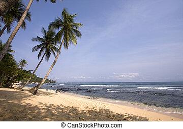 summer paradise landscape as a travel destination