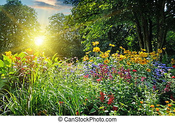 summer park with a beautiful flower bed
