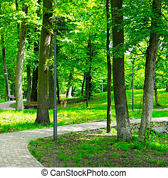 summer park with walking paths