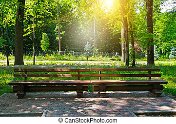 summer park, wooden benches and sunrise