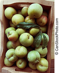 Summer plums in wooden box
