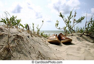 summer., praia