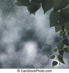 Summer rain abstract seasonal backgrounds
