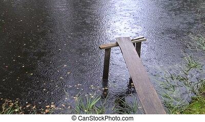 summer rain on pond