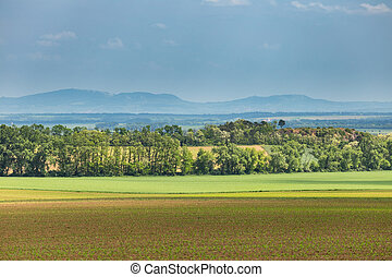 Summer rural countryside of the South Moravia. Palava in the background. Czech Republic