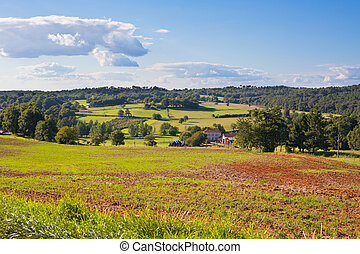 Rural landscape with a Farm and a fileld