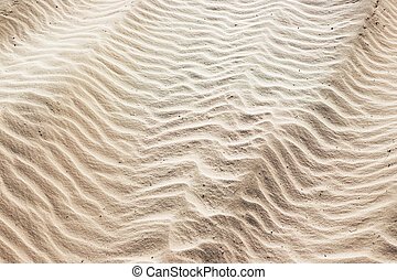 sand background on the beach