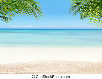 Summer sandy beach with blur ocean on background. Palm ...