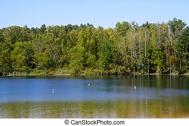 Summer scene - Scenic landscape of tree reflections in...