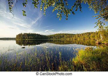 summer scene - summer evening scene at Ruunaa hiking area, ...