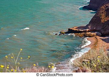 Summer sea landscape